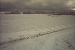 Winters Texel